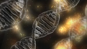 dna 1903318 1280 300x169 - Origin of Life Reveals a Transcendent Creator